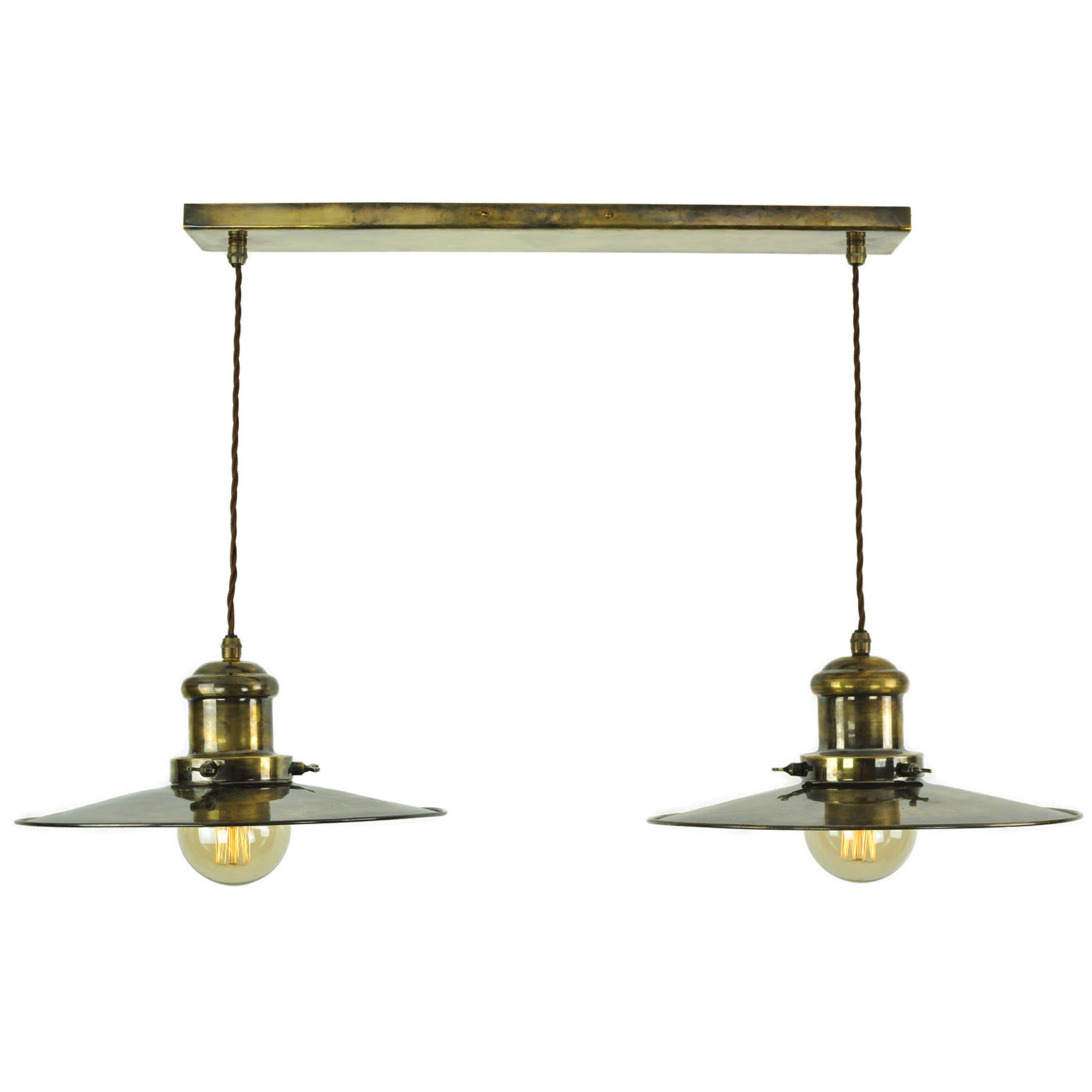 Edison Large 2 light pendant